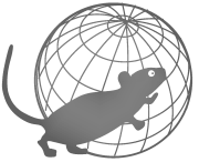 Logo_PHENOMIN mouse gray