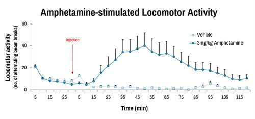 Behavior_Amphetamine LMA graph