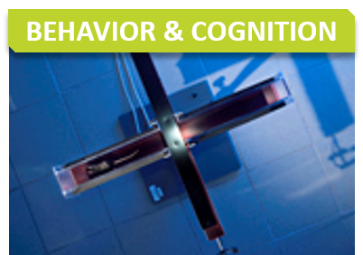 Behavior_Titre_Behavior and cognition