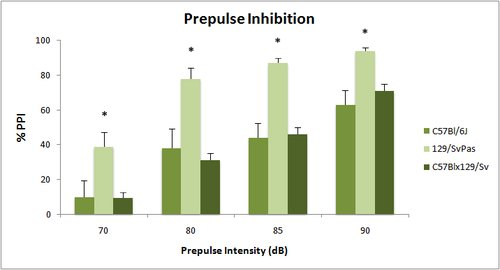 Behavior_Prepulse inhibition graph