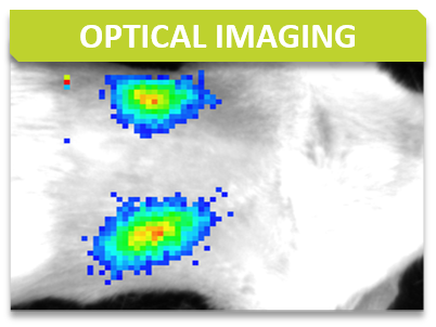 Imaging_Titre_Optical