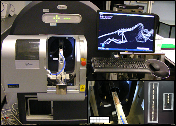 Imaging_X ray Bone dynamics MicroCT equipment